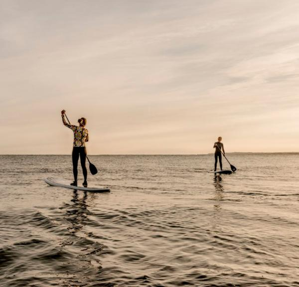 Paddle board surfende par i Nordjylland